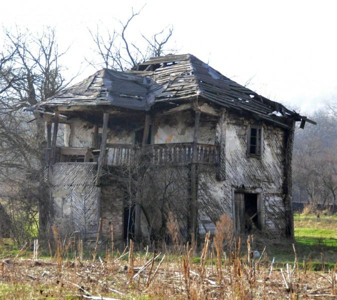 Cula E Nicolaescu 2010