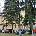 Liceul Carol I, Craiova - clădirea școlii generale