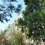 Casa Vernescu, Craiova - vedere prin grădina interioară