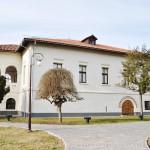 Casa Baniei, Craiova (3)
