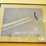 Expozitie foto SIAF 2015 la Muzeul Olteniei (7)
