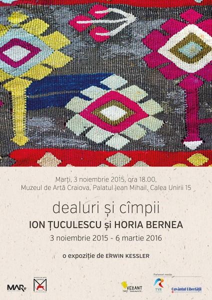 Afis Dealuri si cimpii la Muzeul de Arta Craiova