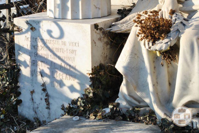 Inscriptie - Monumentul funerar al familiei Aman din Cimitirul Sineasca, Craiova
